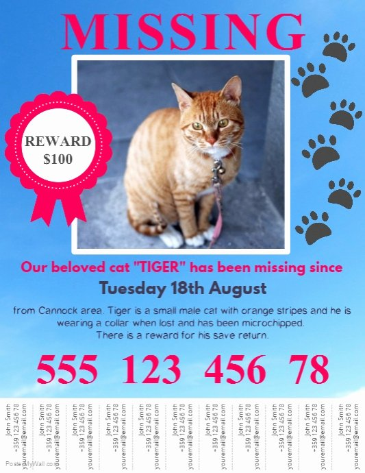 Lost Cat Posters Template New Lost Pet Flyer Template with Tabs
