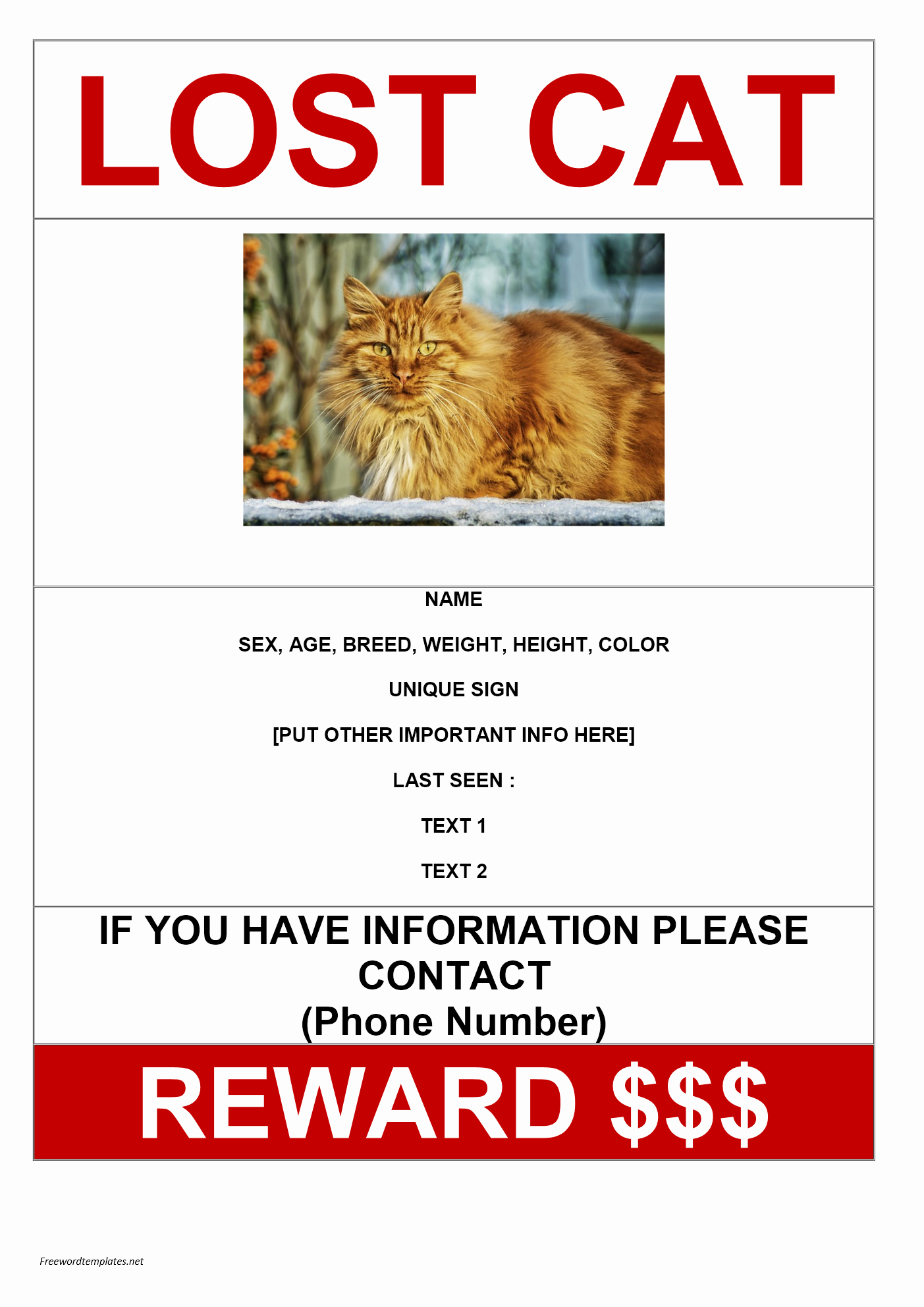 Lost Cat Posters Template New Missing Cat Poster Sample Archives