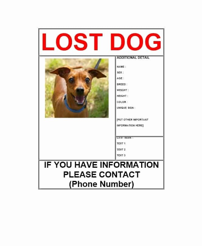 Lost Dog Flyer Template Elegant 40 Lost Pet Flyers [missing Cat Dog Poster] Template