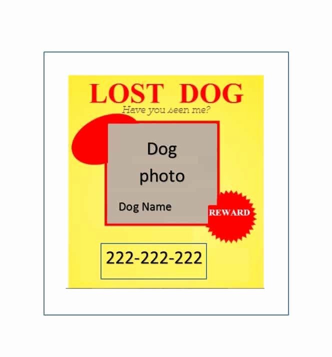 Lost Dog Flyer Template Lovely 40 Lost Pet Flyers [missing Cat Dog Poster] Template