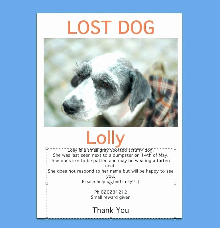 Lost Dog Flyers Template Best Of Lost Dog Flyer Template Printable Lost Dog Flyers Lost Dog
