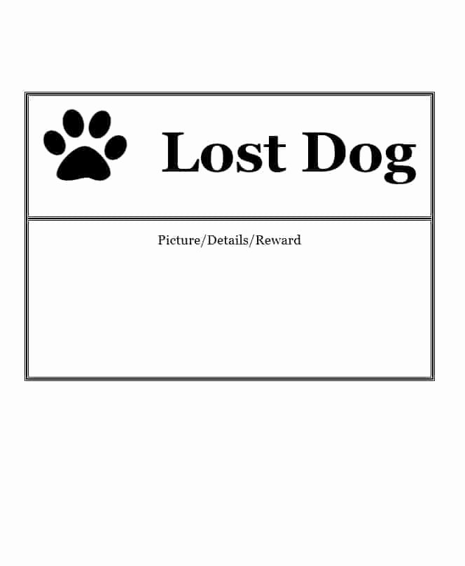 Lost Dog Flyers Template Elegant 40 Lost Pet Flyers [missing Cat Dog Poster] Template