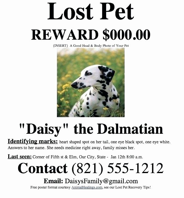 Lost Dog Flyers Template Elegant Found Dog Poster Template for Missing Pet Free Templates