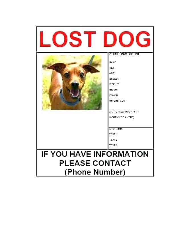Lost Dog Flyers Template Elegant Found Dog Poster Template Picture Writing Printable