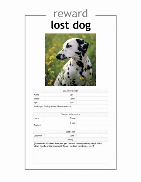 Lost Dog Flyers Template Lovely Lost Dog Template Flyer Yourweek 51c8e0eca25e