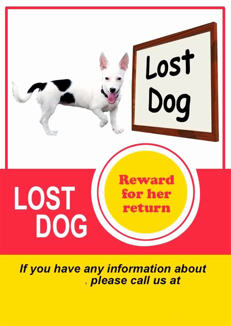 Lost Dog Flyers Template Luxury 20 Lost Cat Dog Flyer & Poster Templates for Microsoft