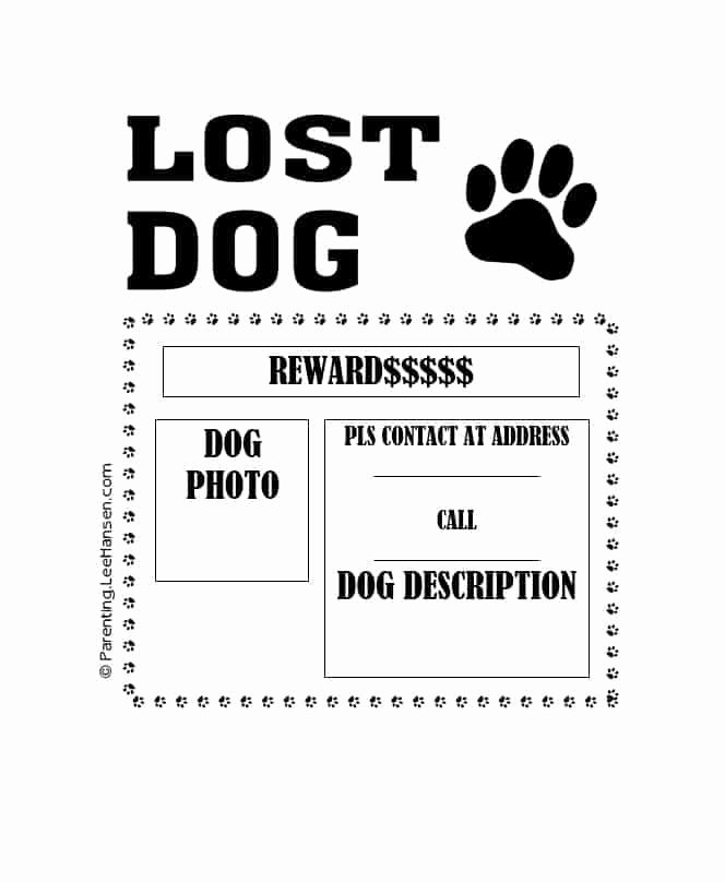 Lost Dog Flyers Template Unique 40 Lost Pet Flyers [missing Cat Dog Poster] Template