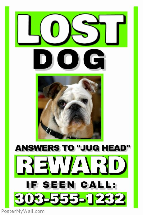 Lost Pet Flyer Template Unique Lost Dog Template