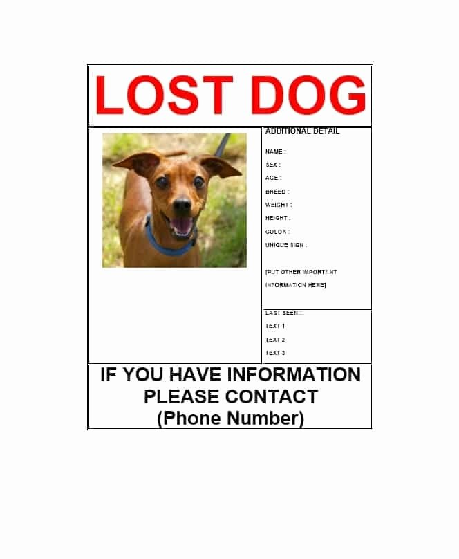 Lost Pet Poster Template Best Of Missing Dog Template Invitation Template
