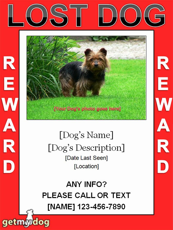 Lost Pet Poster Template Elegant 12 Psd Lost Dog Flyer Templates