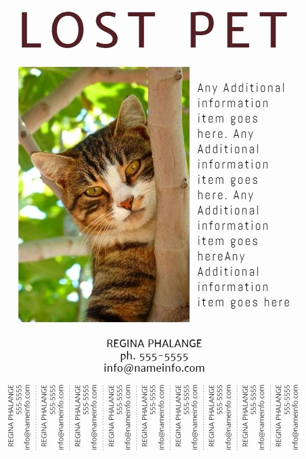 Lost Pet Poster Template New Lost Pet Flyer with Tear Off Tabs Template