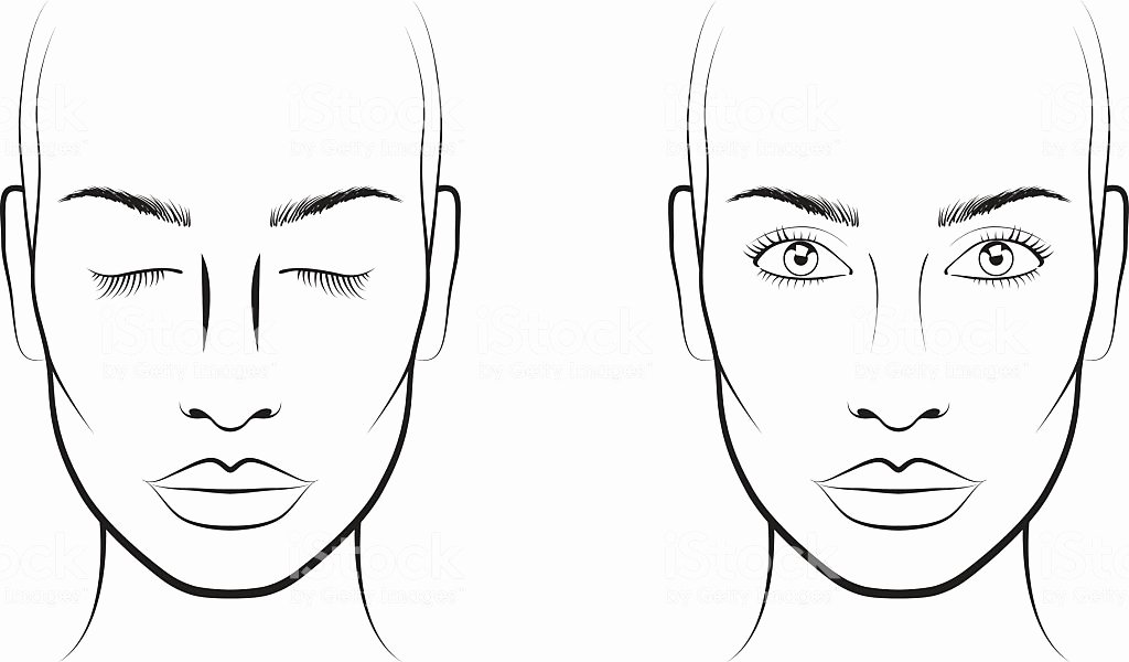 Makeup Artist Contract Template Fresh Face Template Young Woman Face Chart Makeup Artist Blank