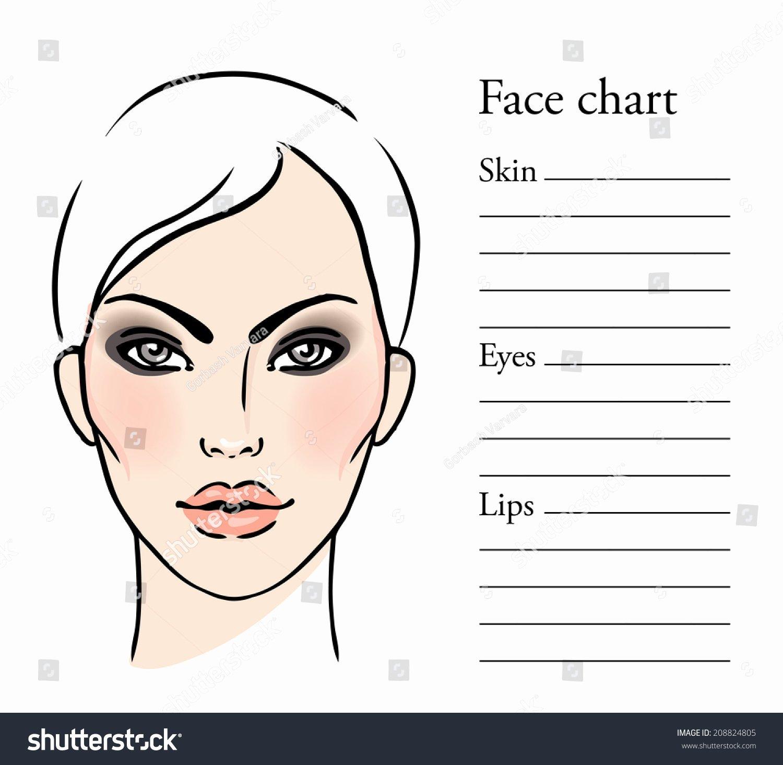 Makeup Artist Website Template Lovely Face Chart Makeup Artist Blank Template Stock Vector