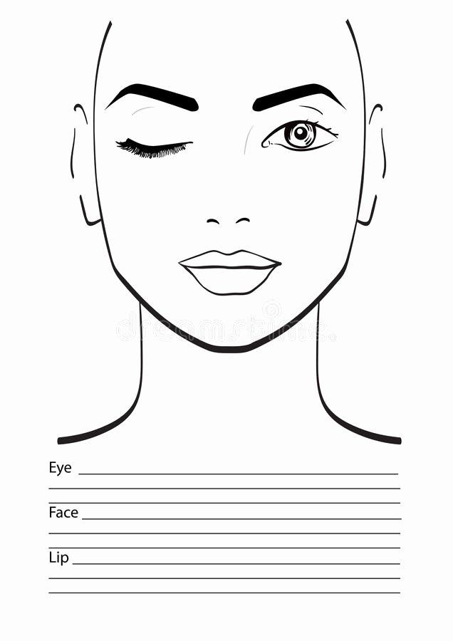 Makeup Artist Website Template Luxury Face Chart Makeup Artist Blank Stock Illustration