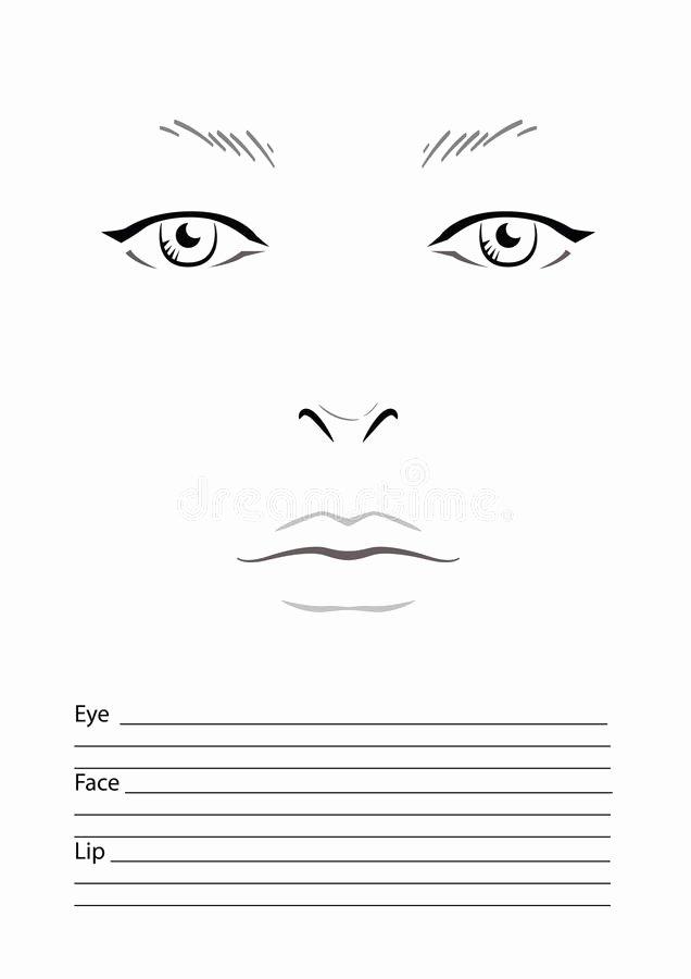 Makeup Artist Website Template Unique Face Chart Makeup Artist Blank Stock Illustration