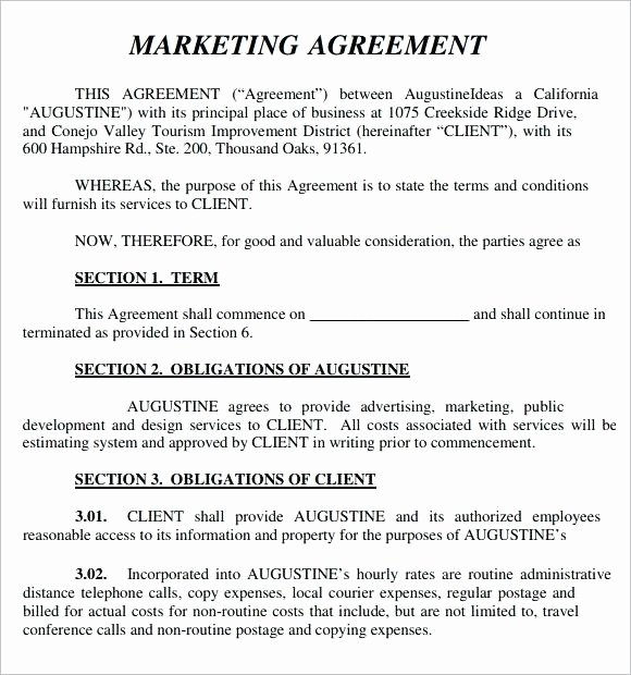 Marketing Agency Agreement Template Inspirational [download] Marketing Agency Contract Template Bonsai