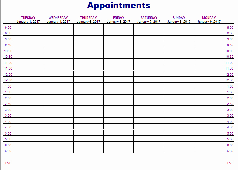 Medical Appointment Scheduling Template Elegant Appointment Schedule Template 5 Free Templates