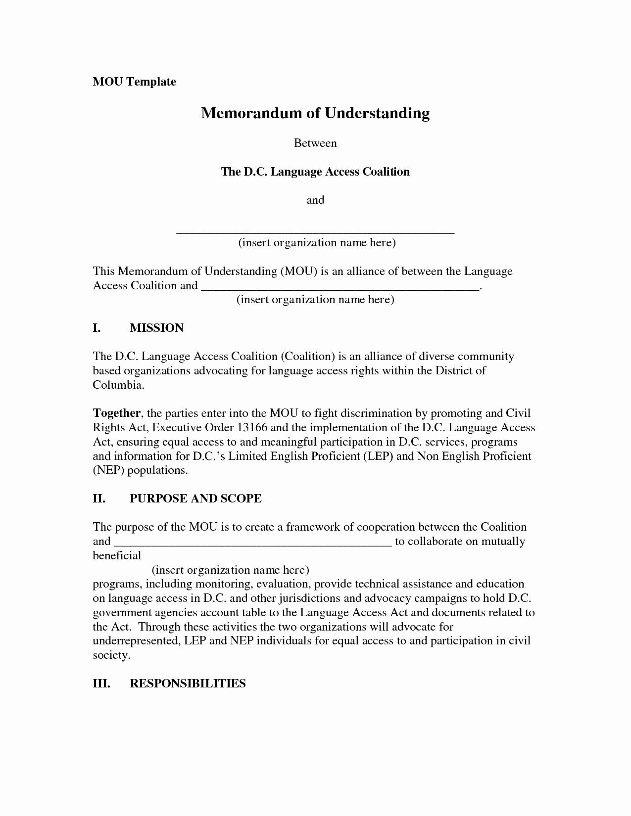 Memorandum Of Agreement Template Elegant Dozerausm Memorandum Of Understanding Template form
