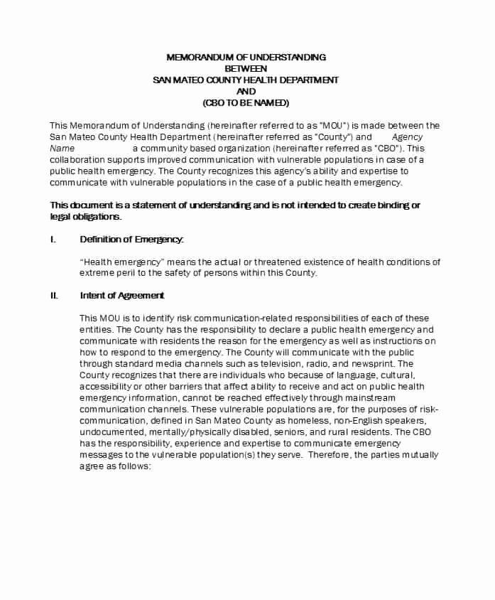 Memorandum Of Understanding Template Luxury 50 Free Memorandum Of Understanding Templates [word]