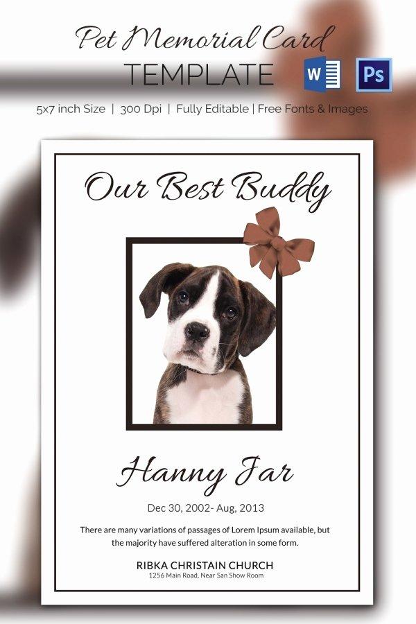 Memorial Card Template Free Best Of 15 Pet Memorial Card Designs & Templates Psd Ai