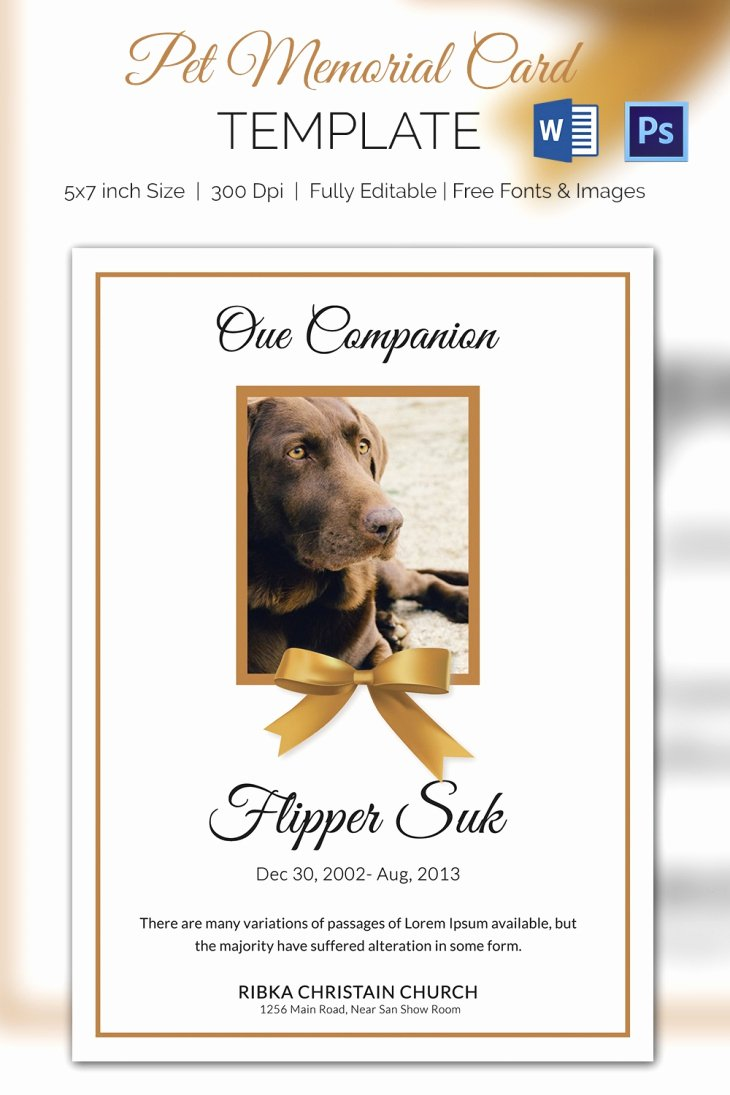 Memorial Cards Template Free Elegant 5 Pet Memorial Card Template Word Psd Pages