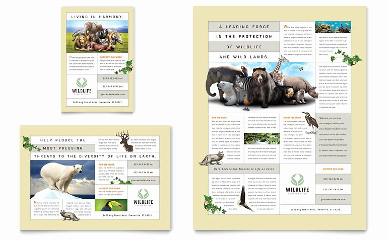 Microsoft Publisher Brochure Template Luxury Nature & Wildlife Conservation Flyer & Ad Template Word