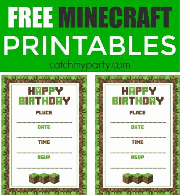 Minecraft Birthday Invite Template Luxury 45 Birthday Invitation Templates Psd Ai