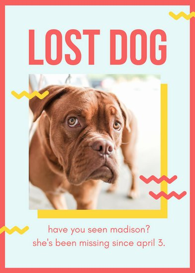 Missing Dog Flyer Template Best Of Red and Yellow Playful Lost Dog Flyer Templates by Canva