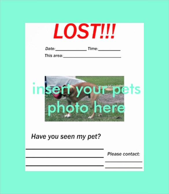 Missing Dog Flyer Template Fresh 8 Lost Dog Flyer Templates