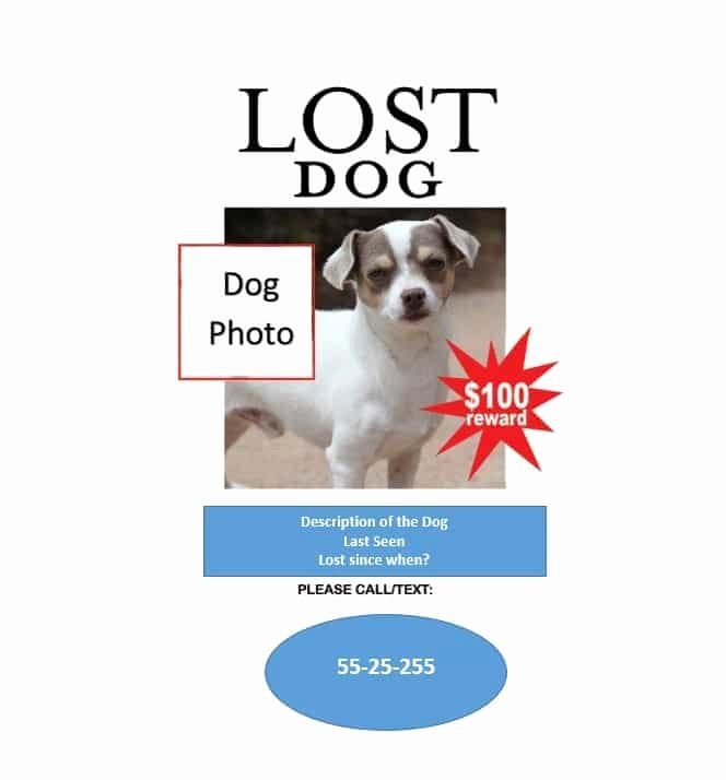 Missing Dog Flyer Template Lovely 40 Lost Pet Flyers [missing Cat Dog Poster] Template