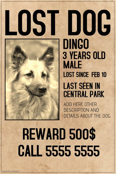 Missing Dog Flyer Template Lovely Copy Of Lost Dog Lot Pet Old Style Poster Template