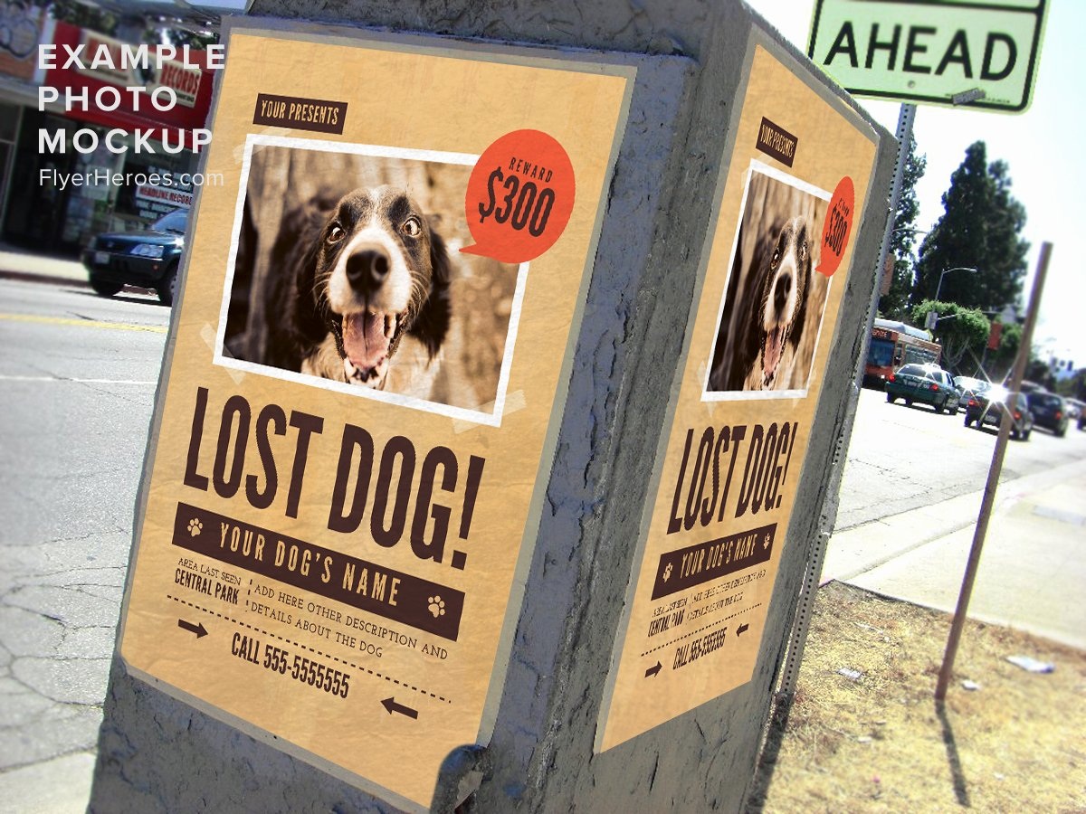 Missing Dog Flyer Template Unique Lost Dog Flyer Template 1 Flyerheroes