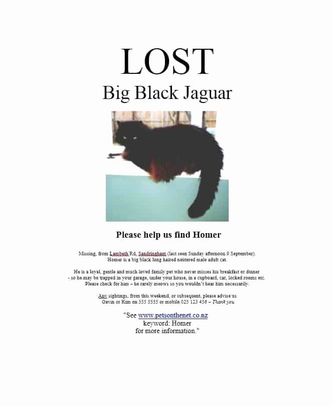 Missing Dog Poster Template Fresh 40 Lost Pet Flyers [missing Cat Dog Poster] Template