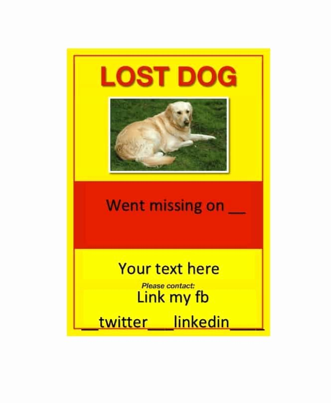 Missing Dog Poster Template Lovely 40 Lost Pet Flyers [missing Cat Dog Poster] Template