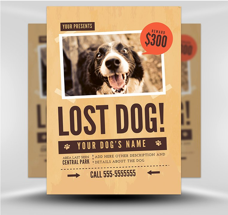 Missing Dog Poster Template Lovely Lost Dog Flyer Template 1 Flyerheroes