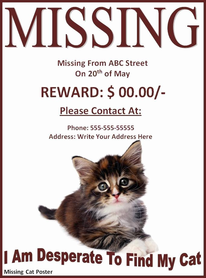 Missing Dog Poster Template Luxury 10 Missing Lost Pet Poster Templates