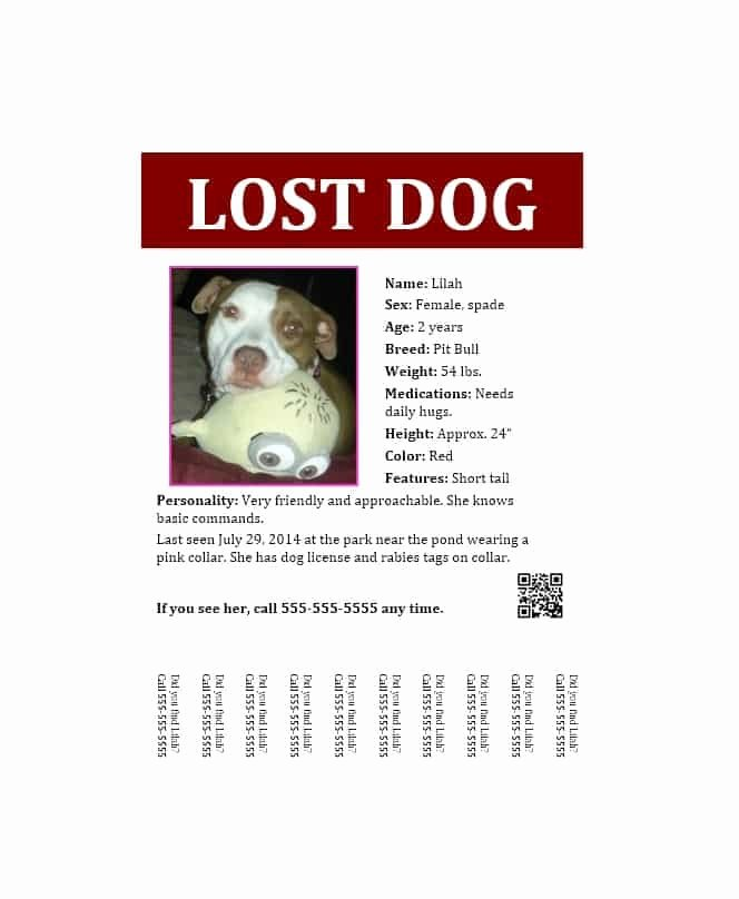 Missing Dog Poster Template Unique 40 Lost Pet Flyers [missing Cat Dog Poster] Template