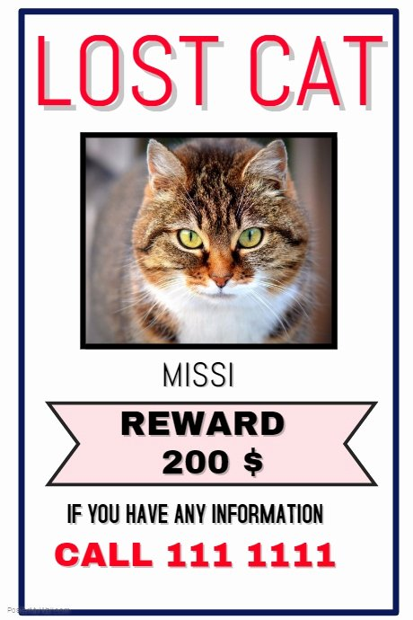 Missing Dog Poster Template Unique Lost Cat Dog Template