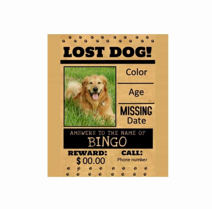Missing Pet Flyer Template Lovely 40 Lost Pet Flyers [missing Cat Dog Poster] Template