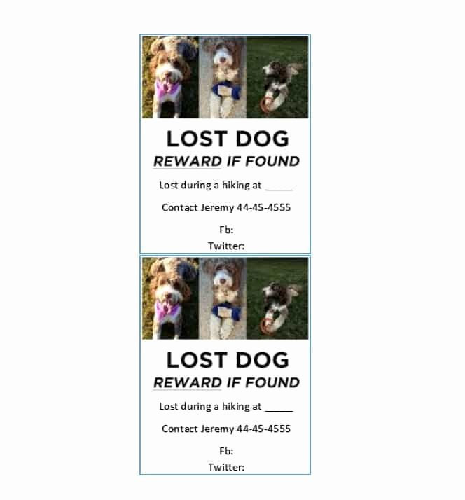 Missing Pet Flyer Template New 40 Lost Pet Flyers [missing Cat Dog Poster] Template
