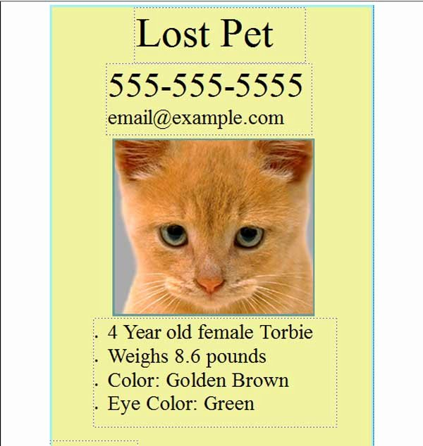 Missing Pet Poster Template Fresh Free Pet Lost Flyer Template Free Line Flyers