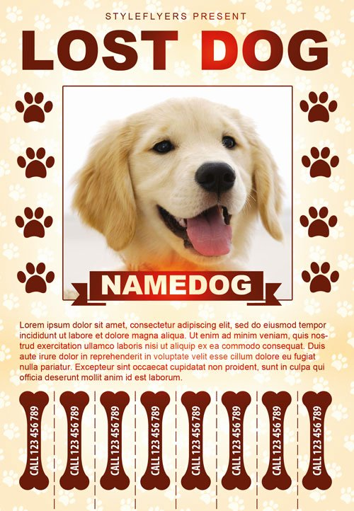 Missing Pet Poster Template Fresh Lost Dog Free Flyer Template Download for Shop