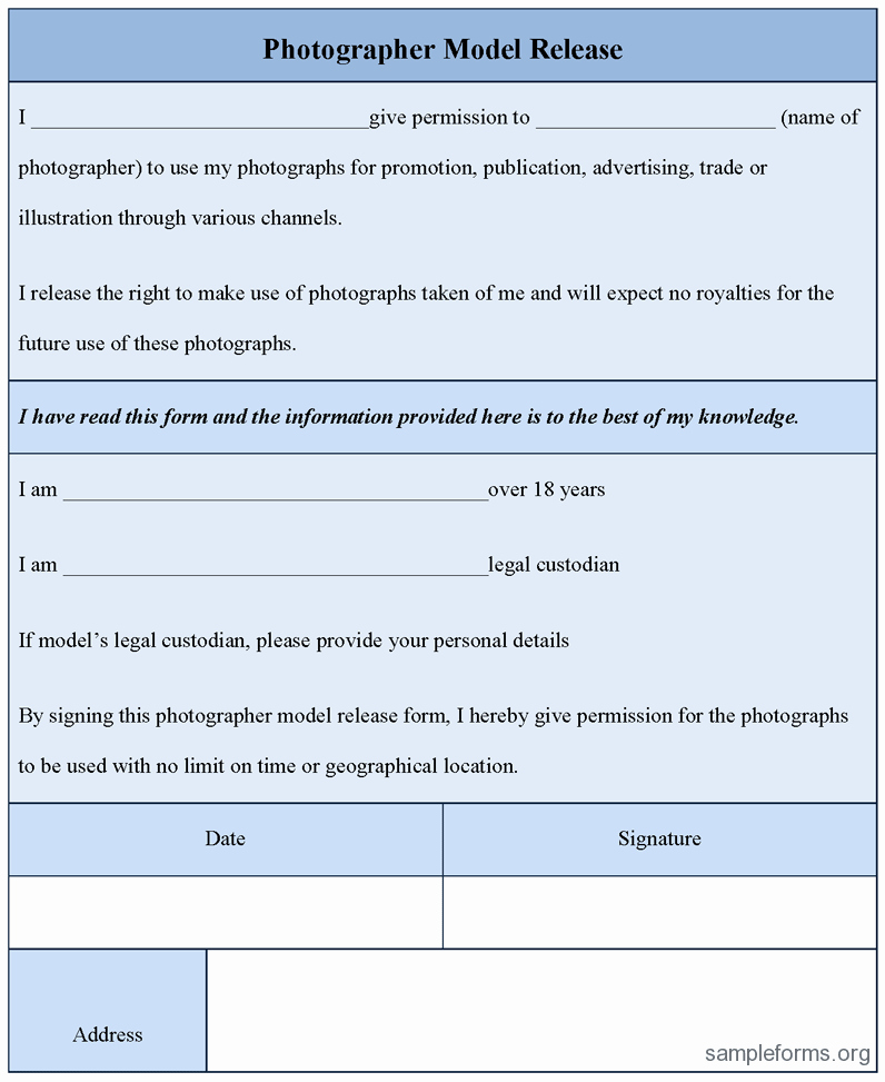 Model Release form Template Best Of Grapher Model Release form Sample forms