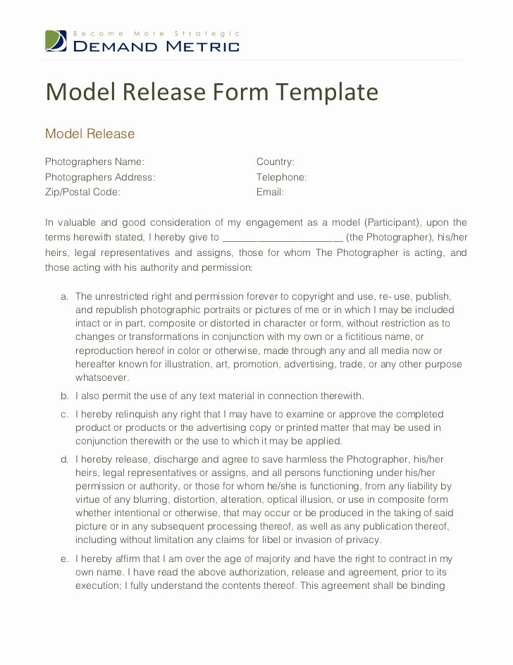 Model Release form Template Lovely Model Release form Template