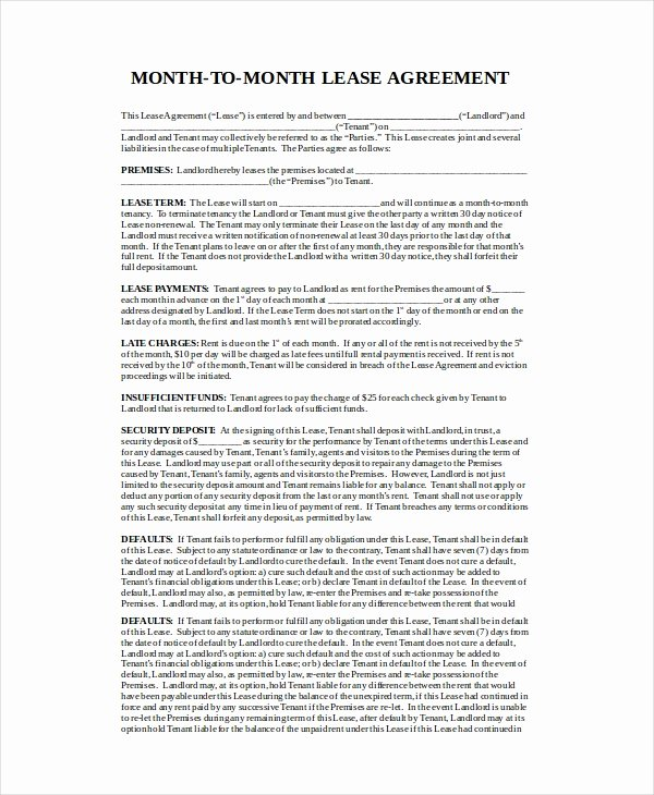 Month Rental Agreement Template Unique Month to Month Lease Agreement 8 Free Pdf Word Google