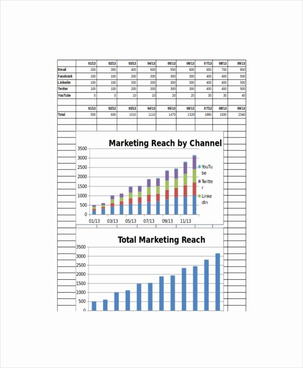 Monthly Marketing Report Template Lovely 20 Marketing Report Template – Free Pdf Google Docs