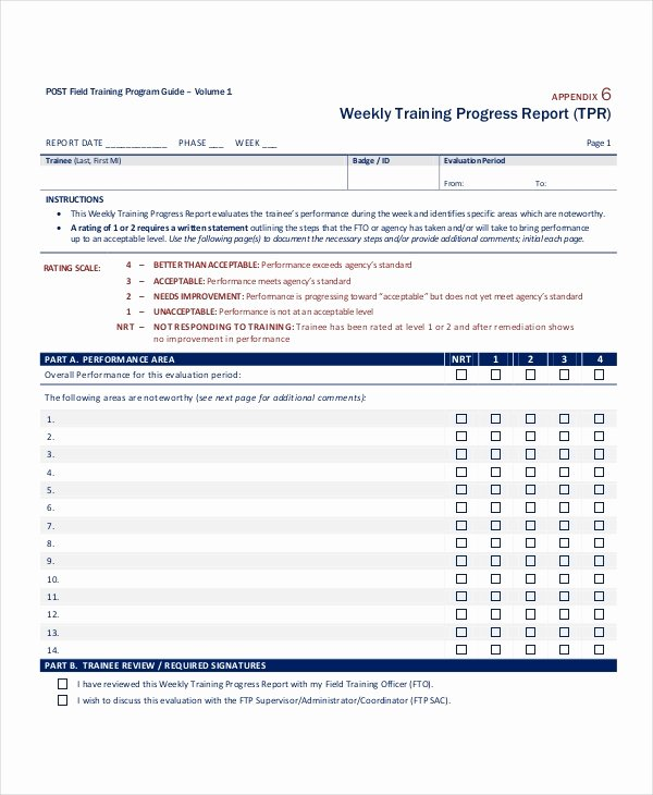 Monthly Progress Report Template Beautiful Progress Report Template 55 Free Pdf Ms Word Google