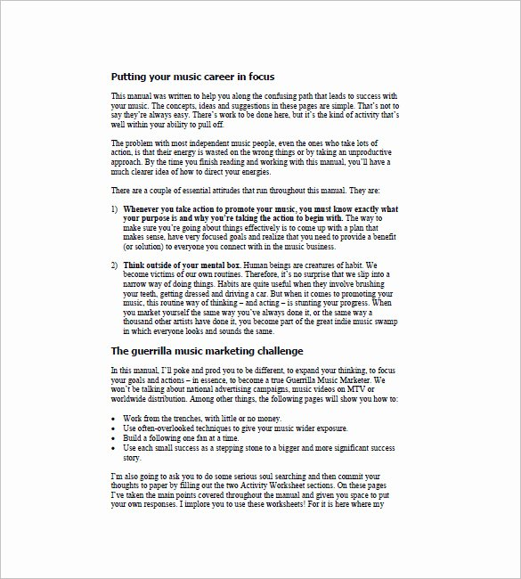 Music Business Plan Template Lovely 14 Music Marketing Plan Templates Doc Pdf