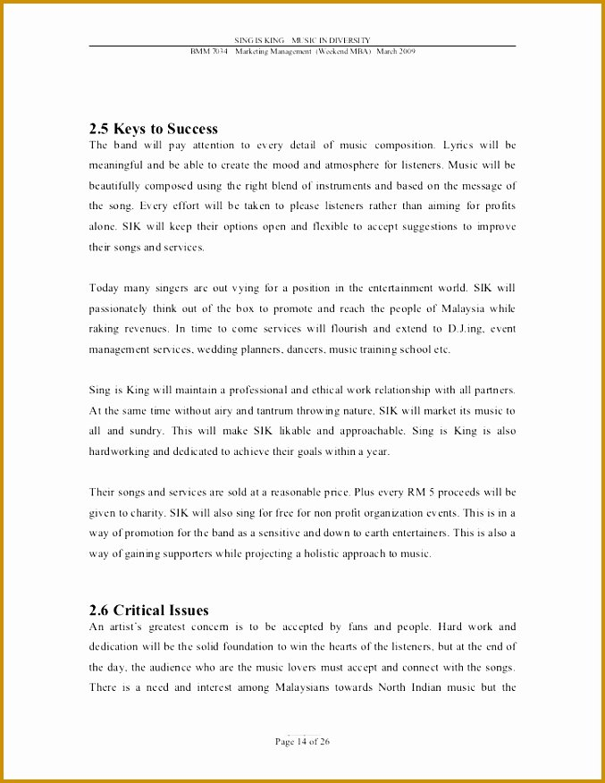 Music Business Plan Template New 3 Music Business Plan Template