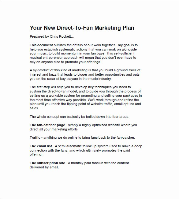 Music Business Plan Template Unique Music Marketing Plan Template – 10 Free Sample Example